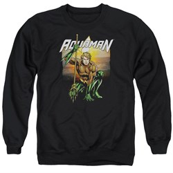 Image of Aquaman Sweatshirt Beach Sunset Adult Black Sweat Shirt