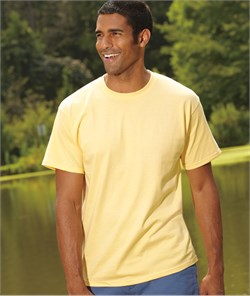 Hanes Shirt Tagless Soft Cotton Tee T-shirt