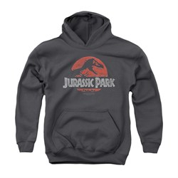 Image of Jurassic Park Youth Hoodie Faded Logo Charcoal Kids Hoody